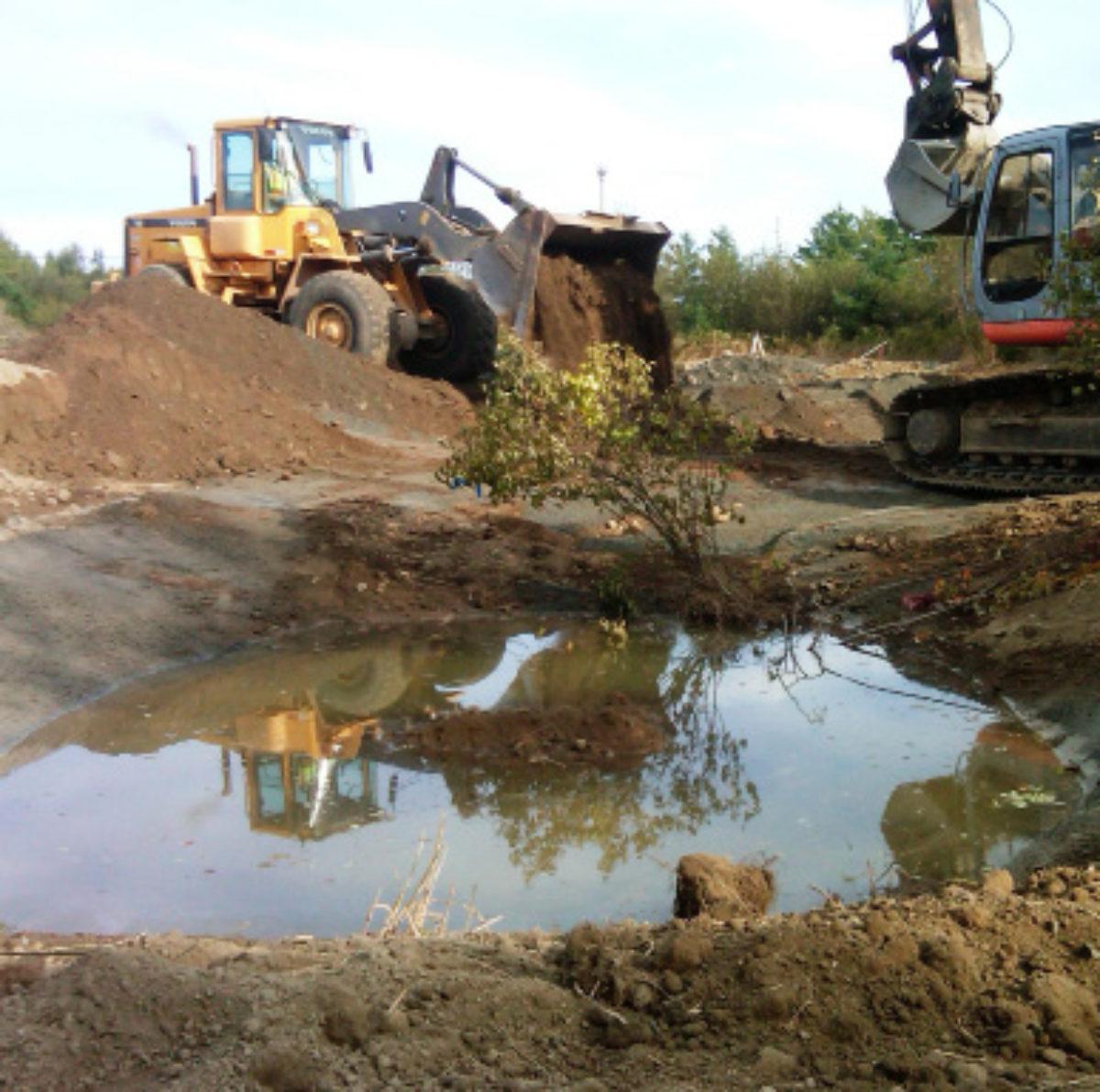 wetland restoration trc